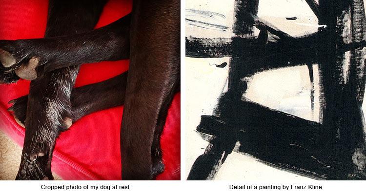 Sleeping dog feet reminds me of a Franz Kline painting