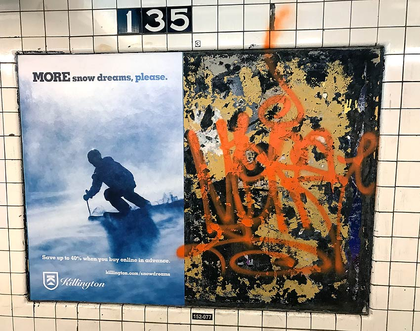 Visual opposites in a Harlem subway station