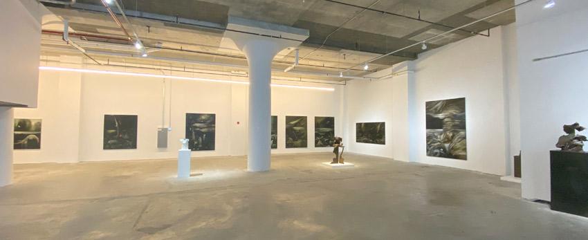 Paolo Pelosini exhibition at HG Contemporary