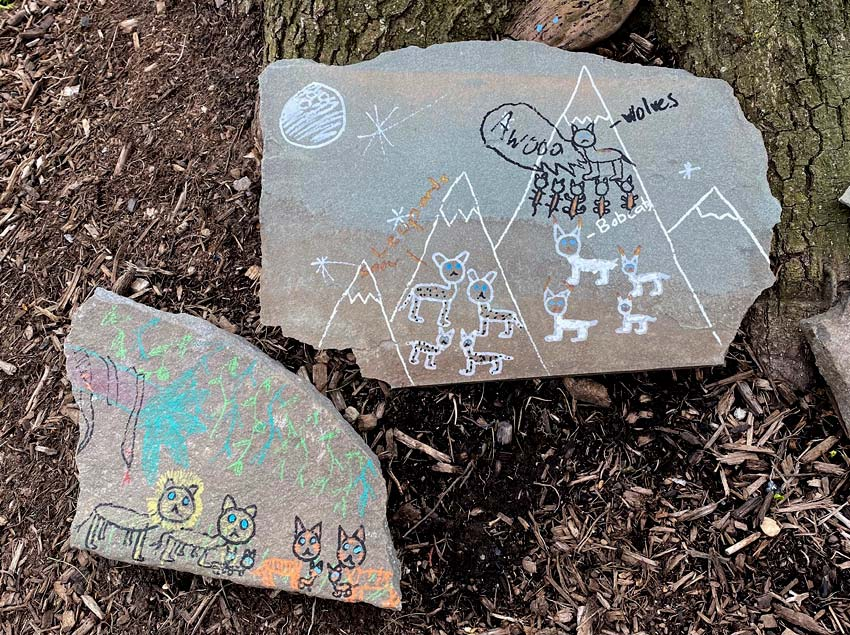 rock art with drawings of lions, tigers, leopards, bobcats and wolves
