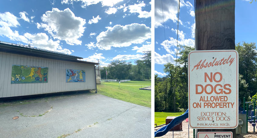 park in Callicoon with dog murals and No Dogs Allowed sign