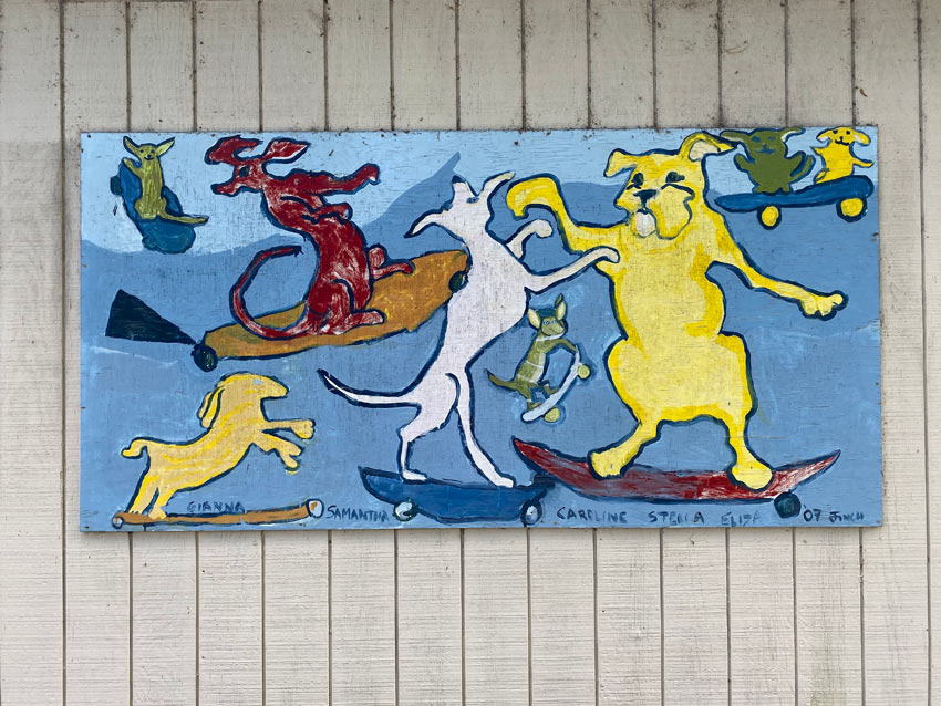 painting of dogs riding skateboards at a park in Callicoon NY