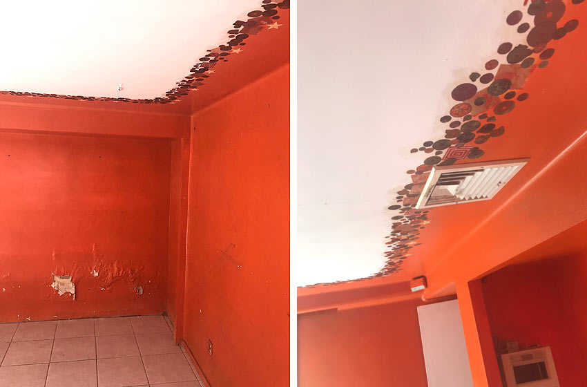 real estate unusual rooms orange wall and ceiling mural